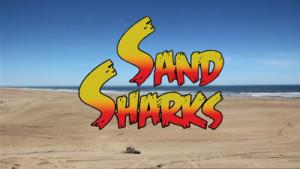 sand-sharks-1