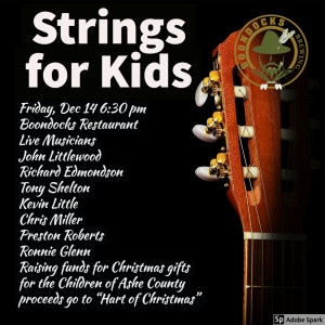 2018 Strings for Kids